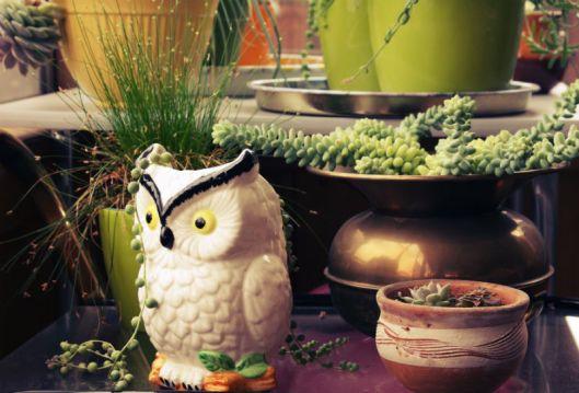 Vintage Owl Planter