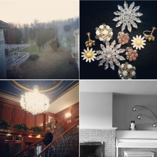 Early December Instagrams