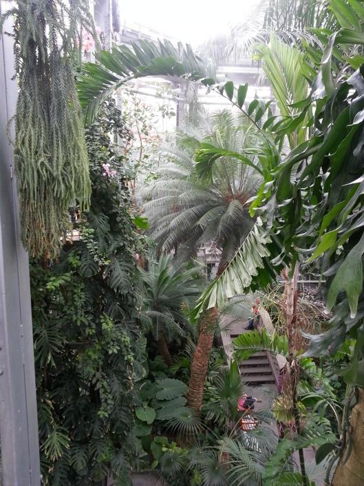 Botanical Garden DC