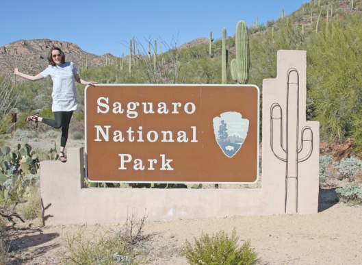 Saguaro National Park_2436