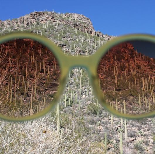 Tucson_2584